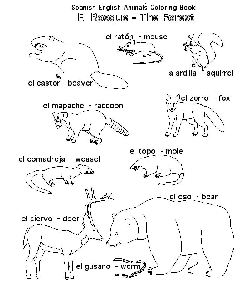 Animal Coloring Pages In Spanish