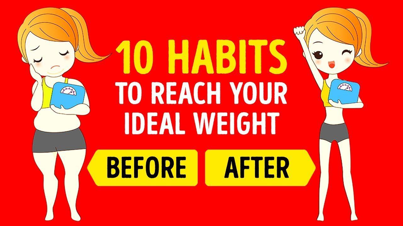 My weight loss plan