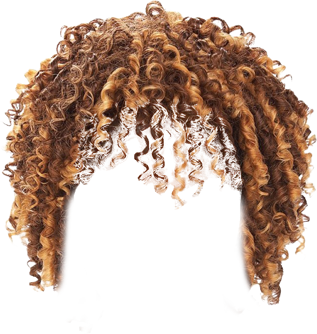 Http Freepngimages Com Wp Content Uploads 2016 02 Twist Hair Transparent Background Png Twist Hairstyles Hair Vector Hair Designs