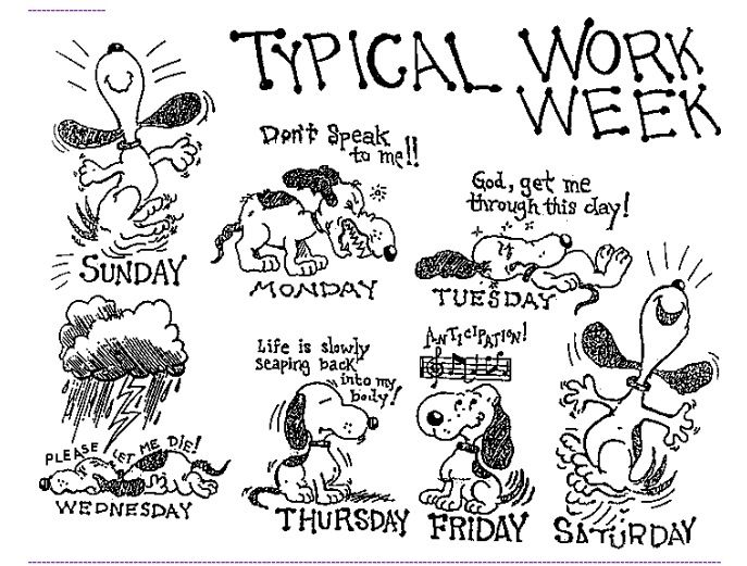Typical Work Week Snoopys Months Weekdays And Seasons Funny
