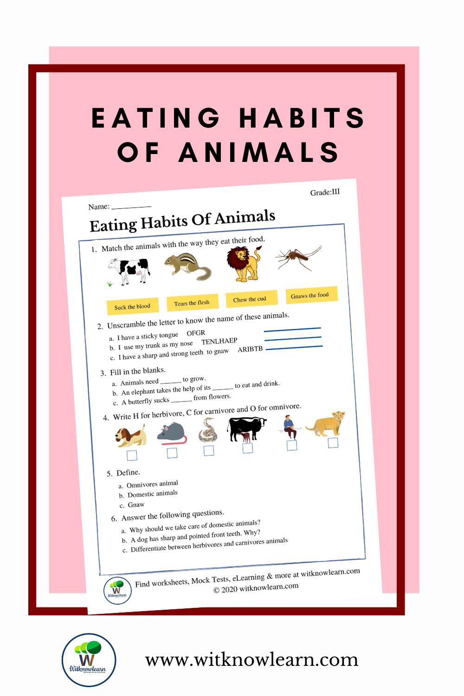 medium resolution of Eating habits of animals   Habits