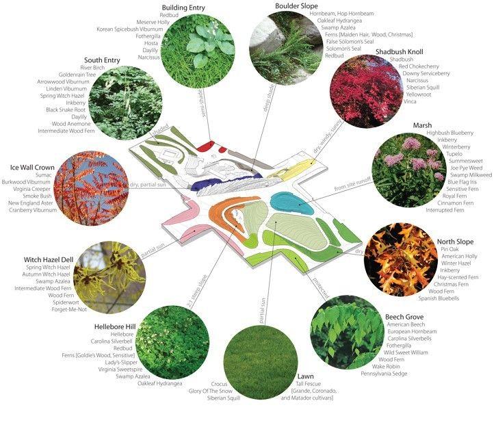 Park Design Tìm Với Google: Landscape Architecture Park