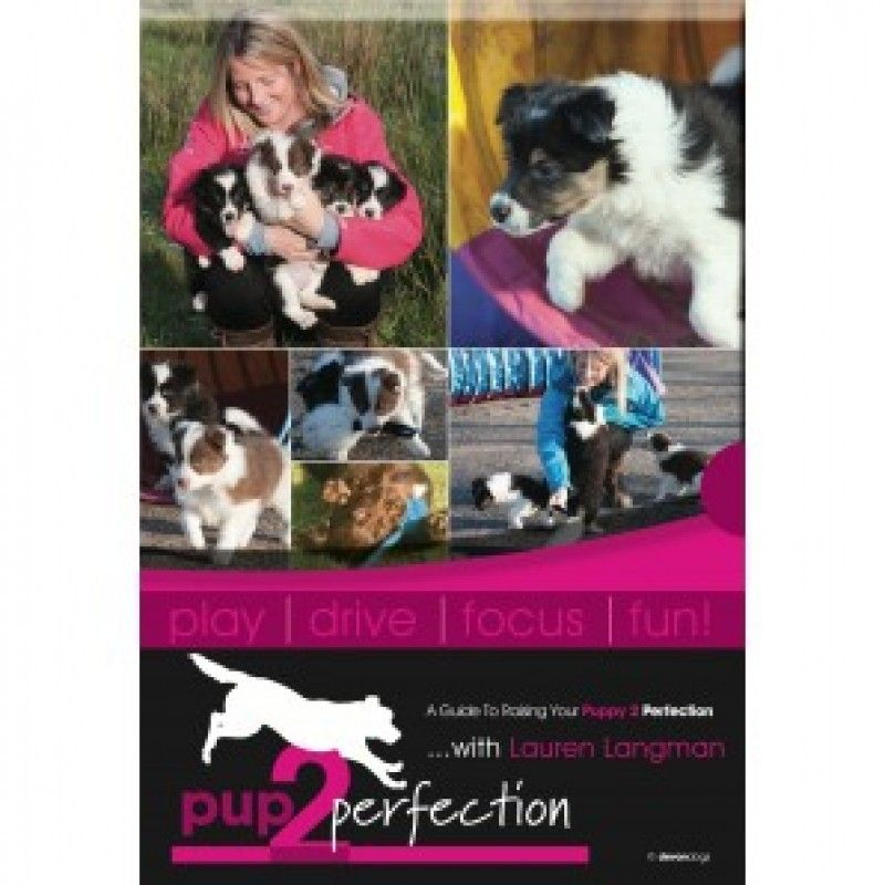 Pup 2 Perfection 2 Dvd Set Pup Dog Training Treats Agility