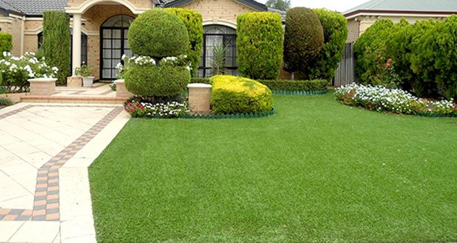 Fake Grass vs Real Grass – What are the differences ?