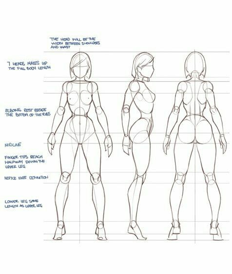 How To Draw Women S Body Human Figure Drawing Figure Drawing Reference Human Drawing