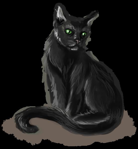 Eweddi, a fey cat from Arisi alnarisa, almost 350 years