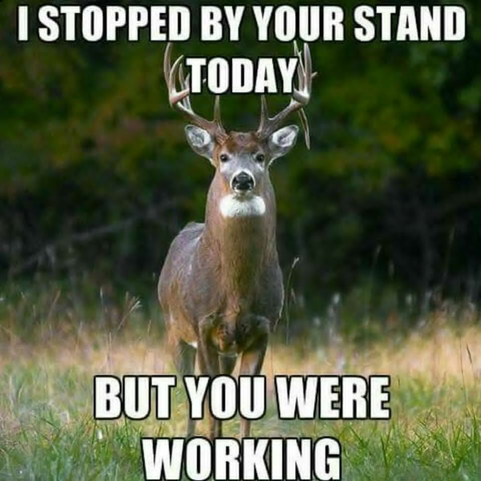 The 20 Best Deer Hunting Memes (So Far) | SayingImages.com ...