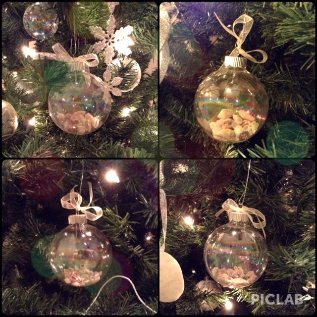 Jamaica Sea Shells In Ornaments From 2012