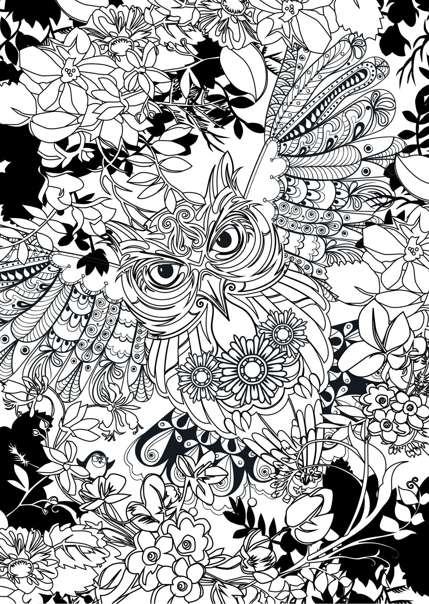 Pin by Bonnie Seter on Owl Ausmalbilder