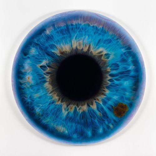 Una imagen más del iris del ojo de Marc Quinn | Imágenes de medicina ...