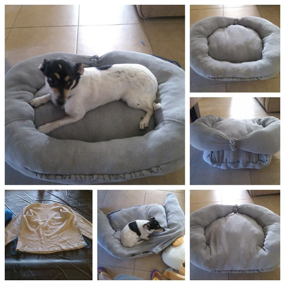 Diy Dog Bed Made From Old Sweat Shirt And Some Stuffings. I Have ... Diy Shabby Chic Pet Bed
