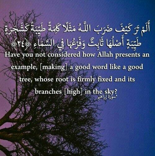 Pin By Quran Sunnah On Quran Quran In English Cool Words Daily Quotes
