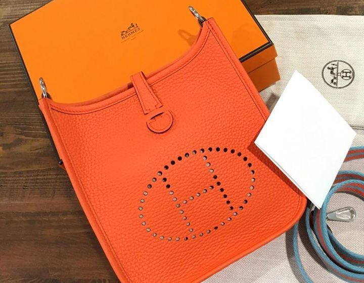 Evelyn TPM. You will fall in love with this bag.