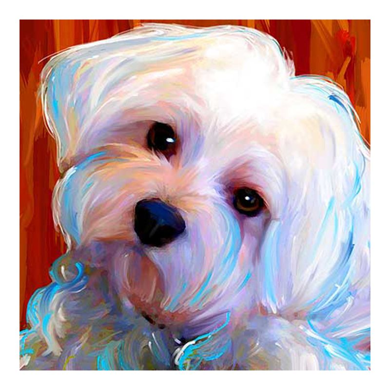 Angel S Hand Lap Dogs Maltese Dogs Diamond Embroidery Flower 5d
