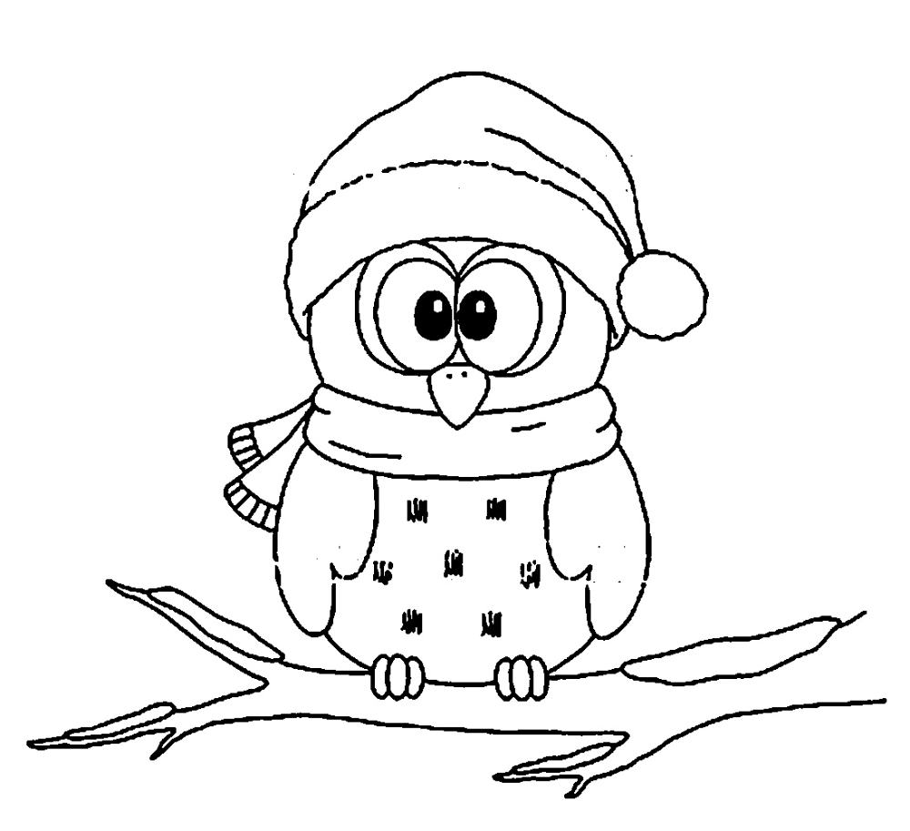 Cute Owl Coloring Pages Printable  Owl coloring pages, Christmas