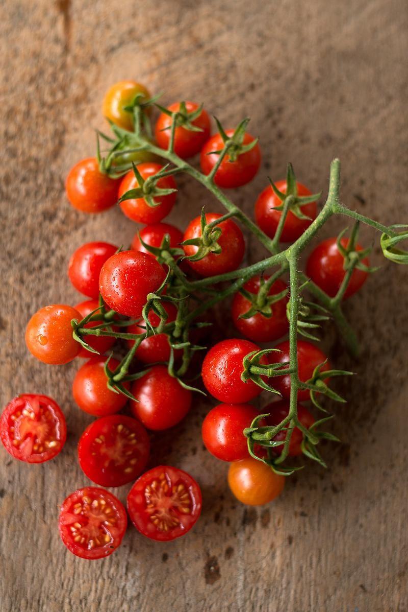Cherry Bomb Tomato ( 64 days, Organic, F1 Hybrid )   Gardening ...