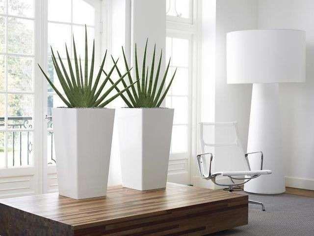 Idee Per Decorare Casa Con Le Piante Vasi Bianchi Home Decor
