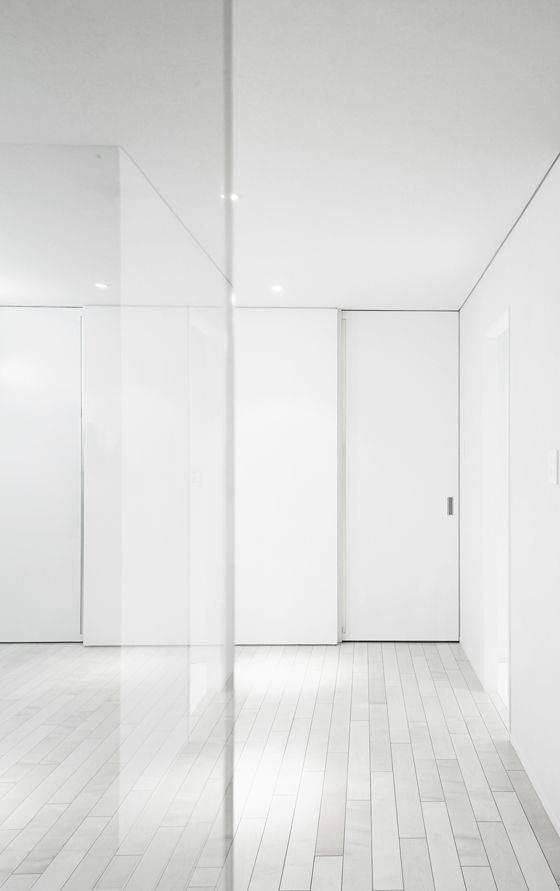 Details Adore The Frameless Door Details Amphidromous Rectangle