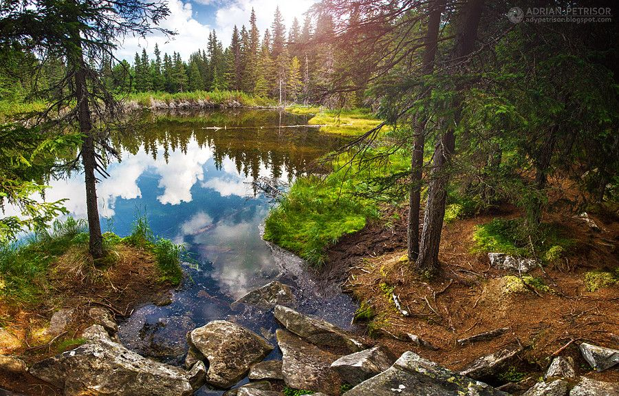 Wild lake by Adrian Petrisor on 500px