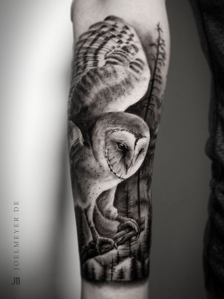 Barn Owl Realistic Tattoo Black And Grey Joel Meyer Tatuagem De Coruja Tatuagem Em Preto E Cinza Tatuagem Realista De Coruja