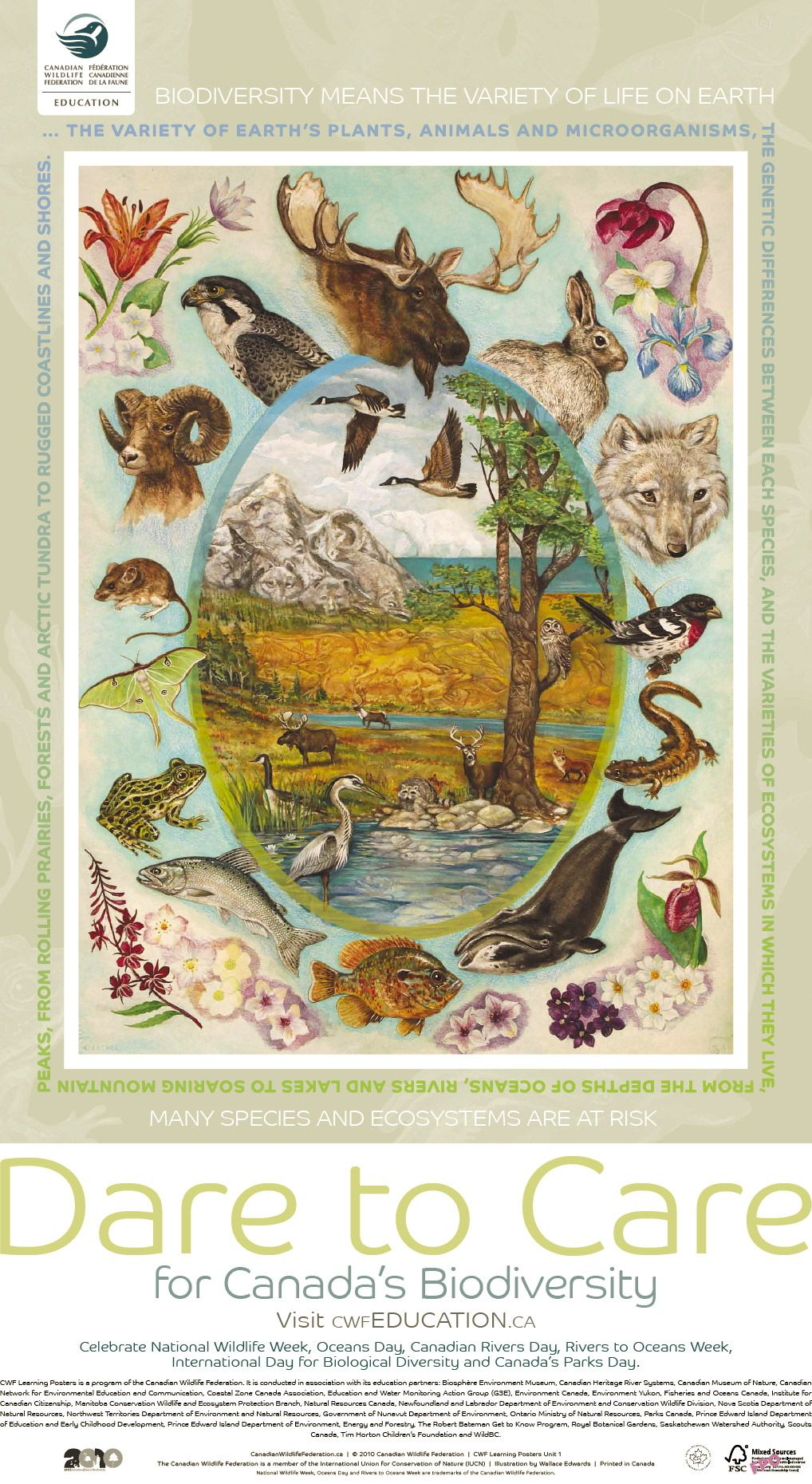Poster Of The World Biodiversity Poster Google Search Biodiversity Vintage World