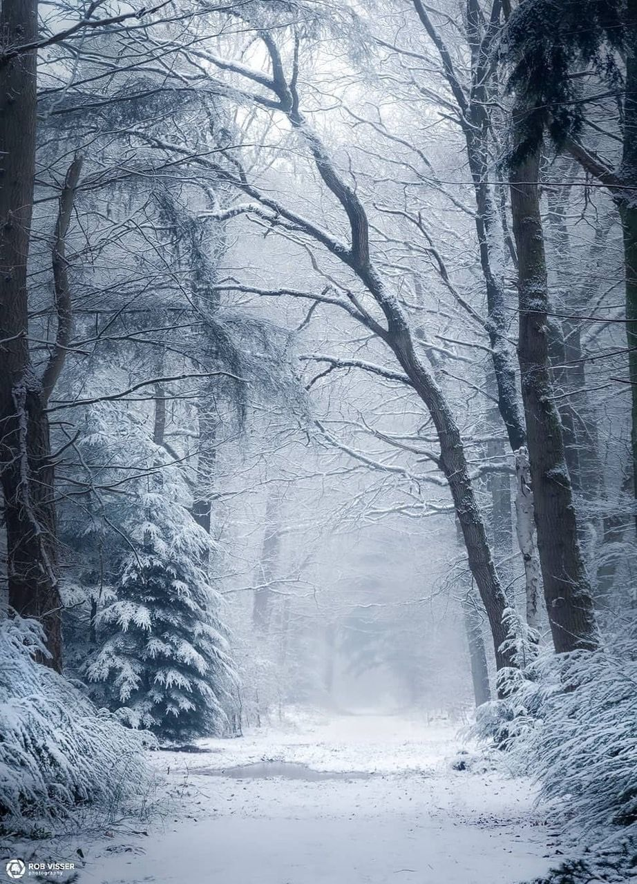Pin By Wisteria On Winter Snow In 2020 Landscape Photography Instagram Seasons Photography