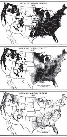 Meanwhile, here's what happened to old growth forests. | 49 Maps That Explain The U.S. For Dumb Foreigners