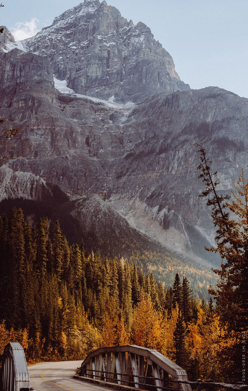 Cosy Autumn Vibes Forestlore My Noble Beast Landscape Scenery Pictures Of Beautiful Places Photo