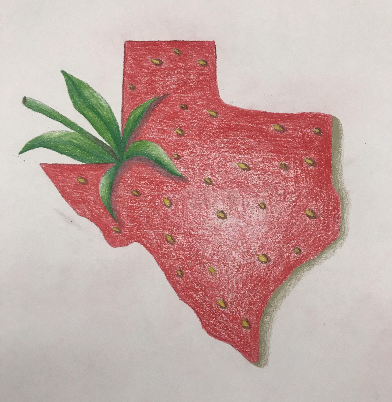 Texas shapes strawberry color pencils Strawberry color