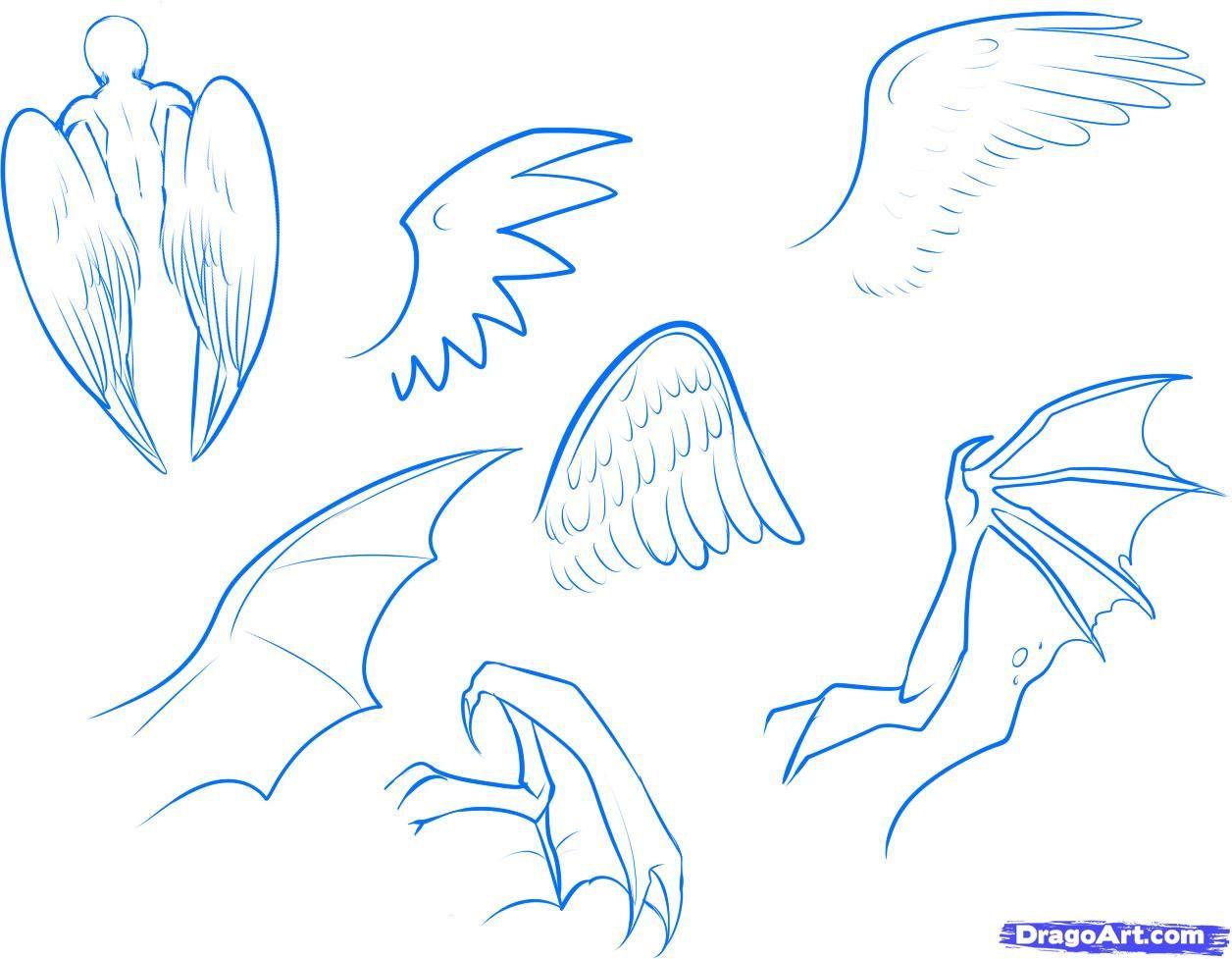 draw anime wings