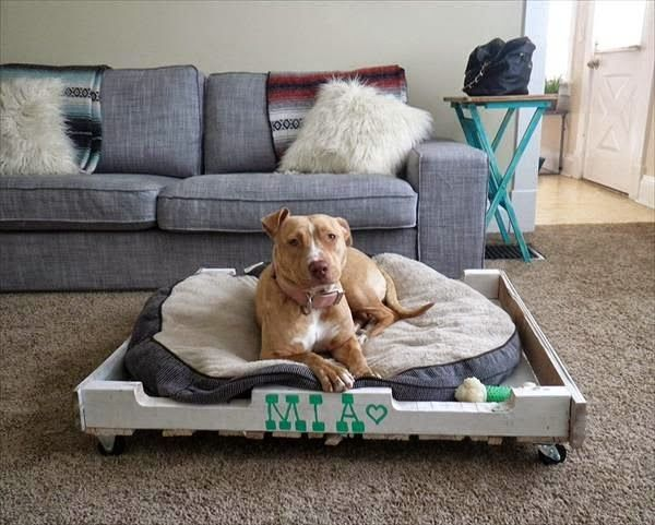 Camas para perros con palets reciclados casa pinterest camas muebles y perros - Casa de perro con palets ...