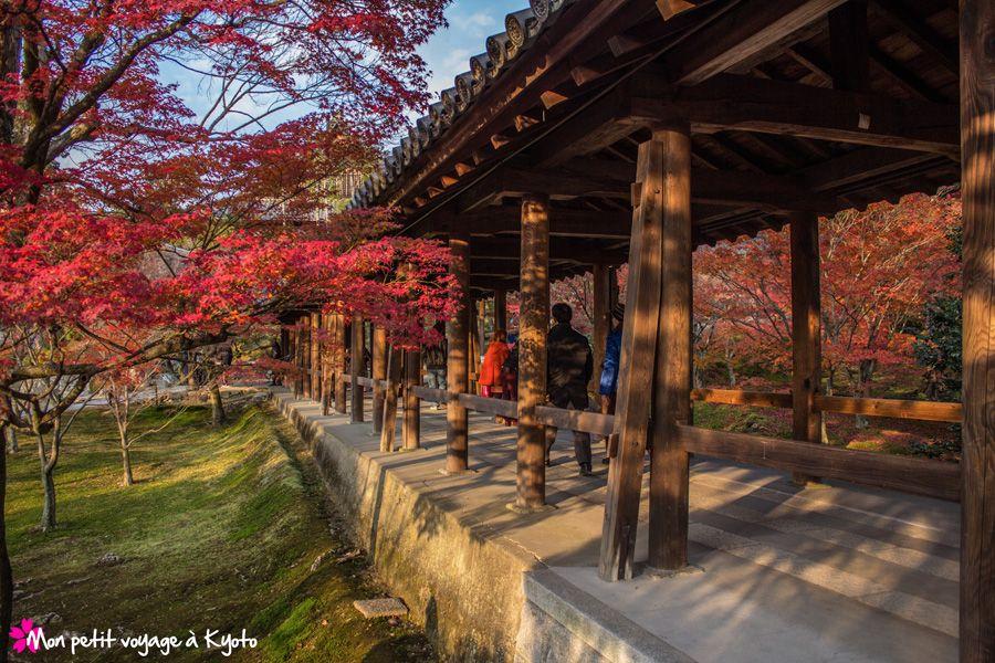Le temple Tofuku-ji est très beau à visiter à n'importe quelle période de l'année (^_^)