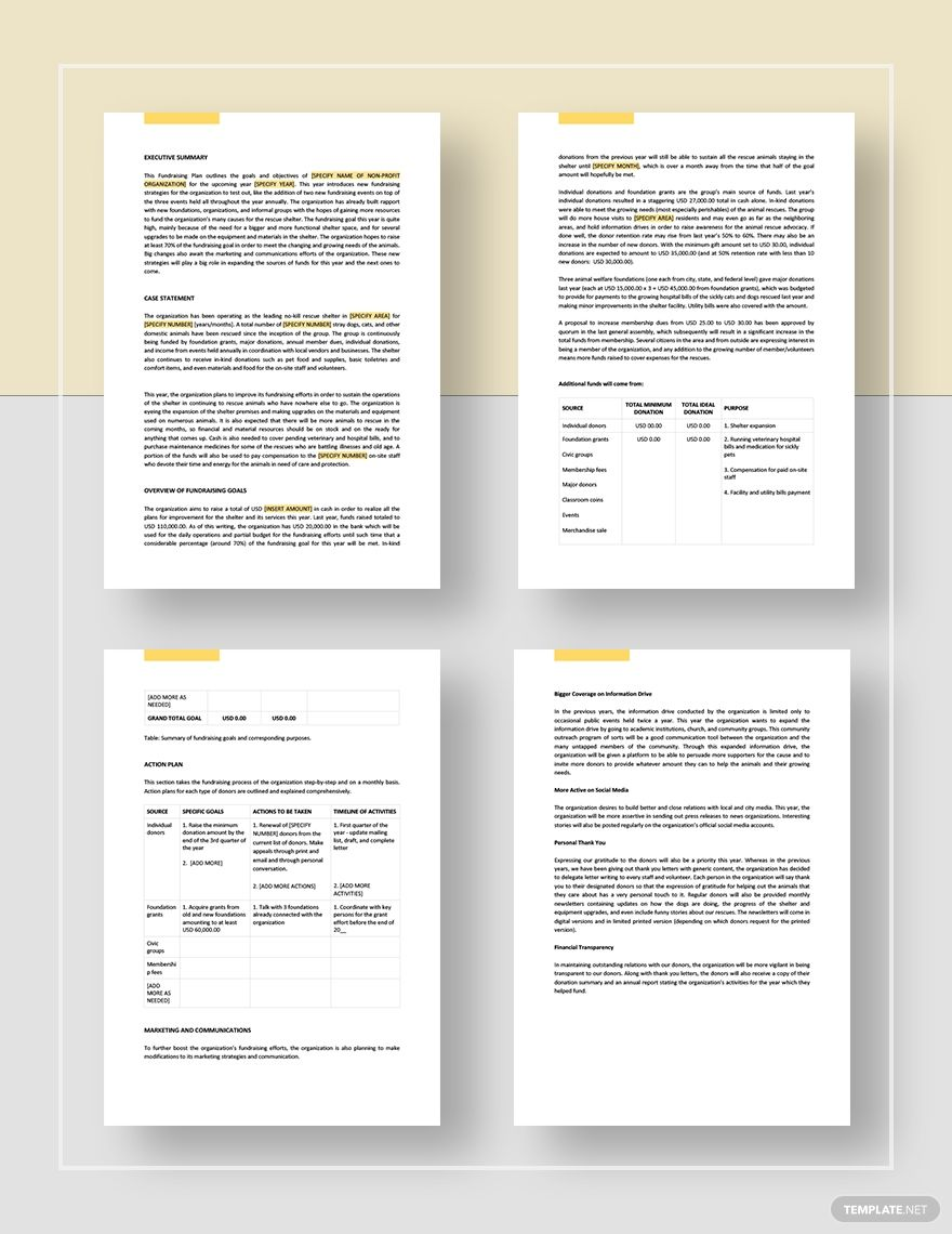 Non Profit Fundraising Plan Template AD, , PAID,