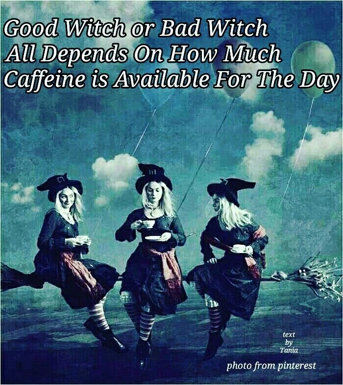Pin By Jennifer On Coffee Lover Coffee Lover Memes Good Morning