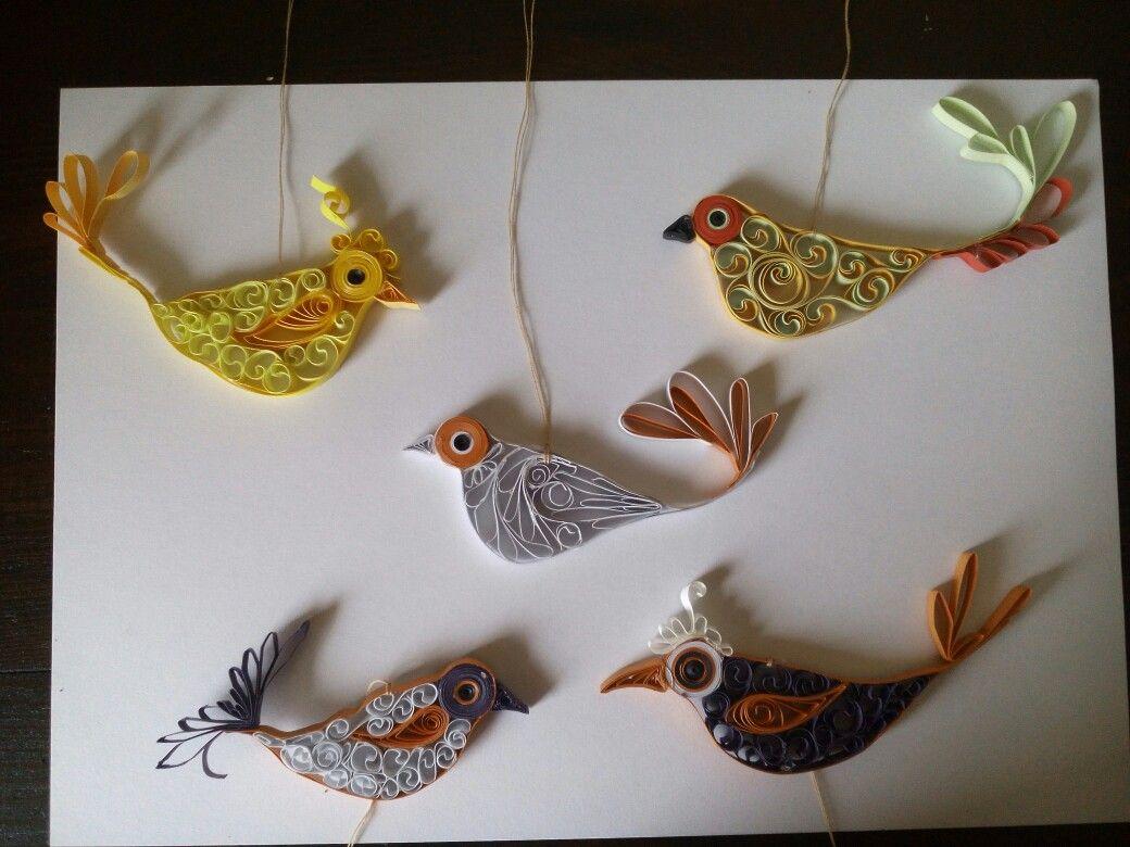 Verschiedene Vögel