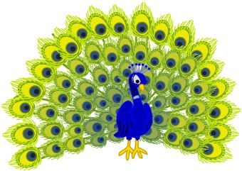 Image result for peacock pillow clipart