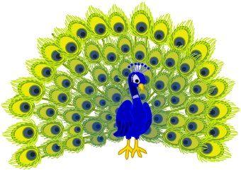 Cartoon beautiful peacock Clipart | k60391180 | Fotosearch