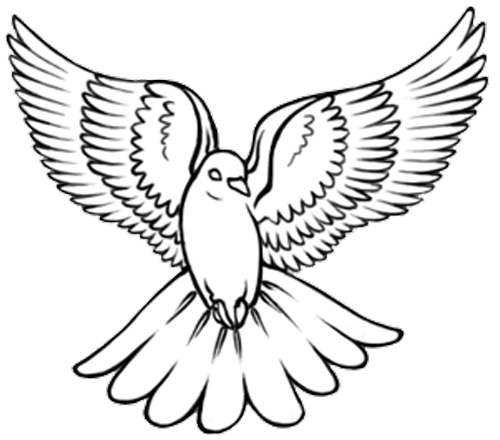 dove tattoos designs 25 500 440 pixels birds pinterest dove tattoos dove tattoo. Black Bedroom Furniture Sets. Home Design Ideas