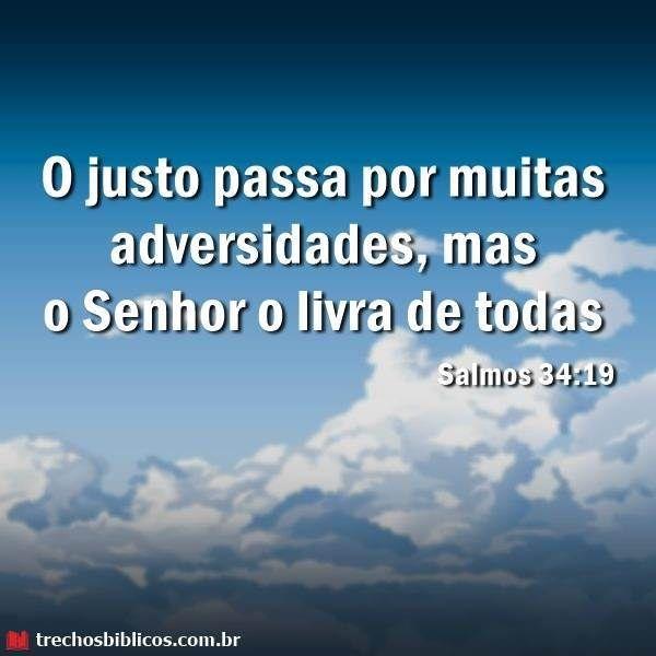 Versículos De Salmos Versículos Biblicos Salmos Salmos