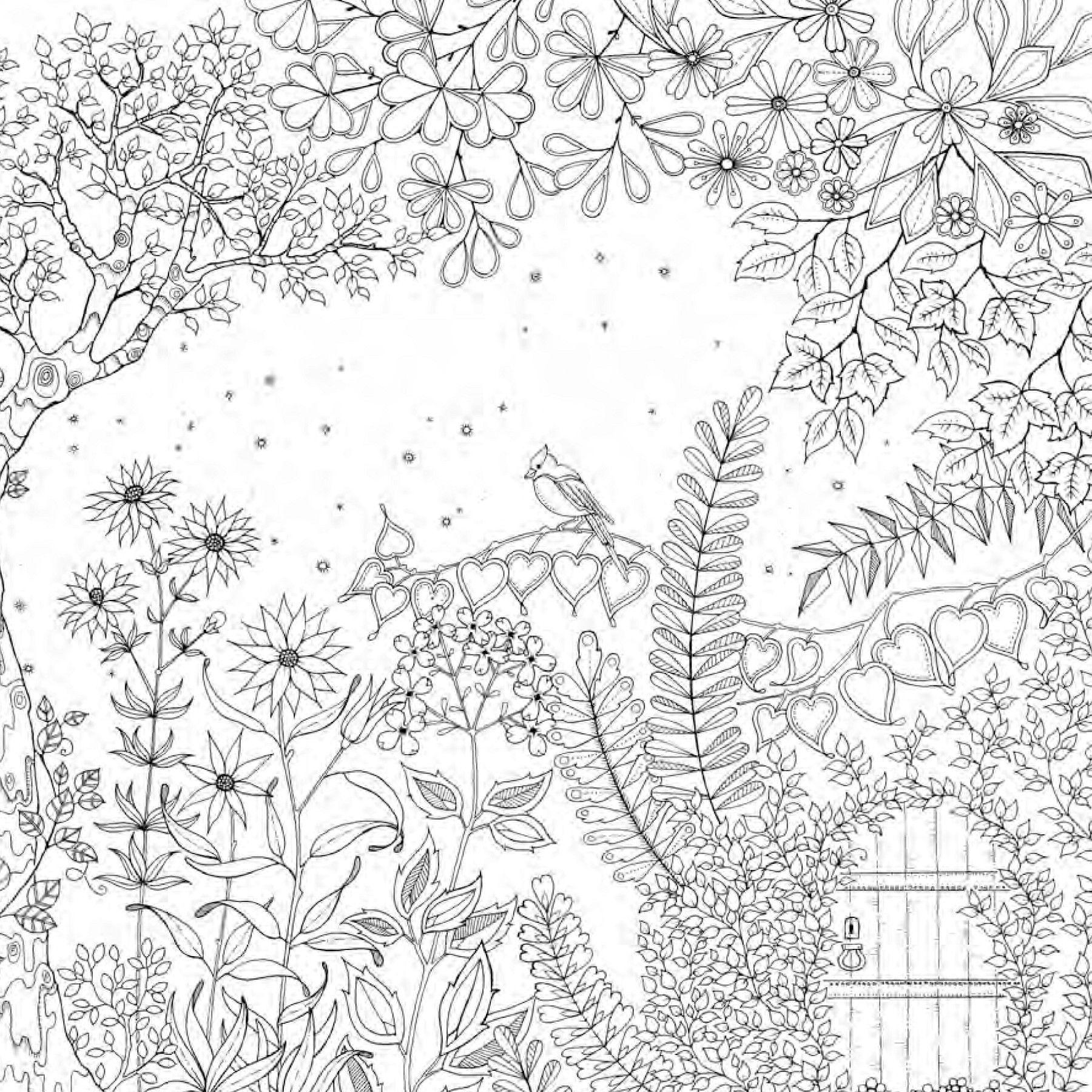 Jardin Secret Coloring Pages