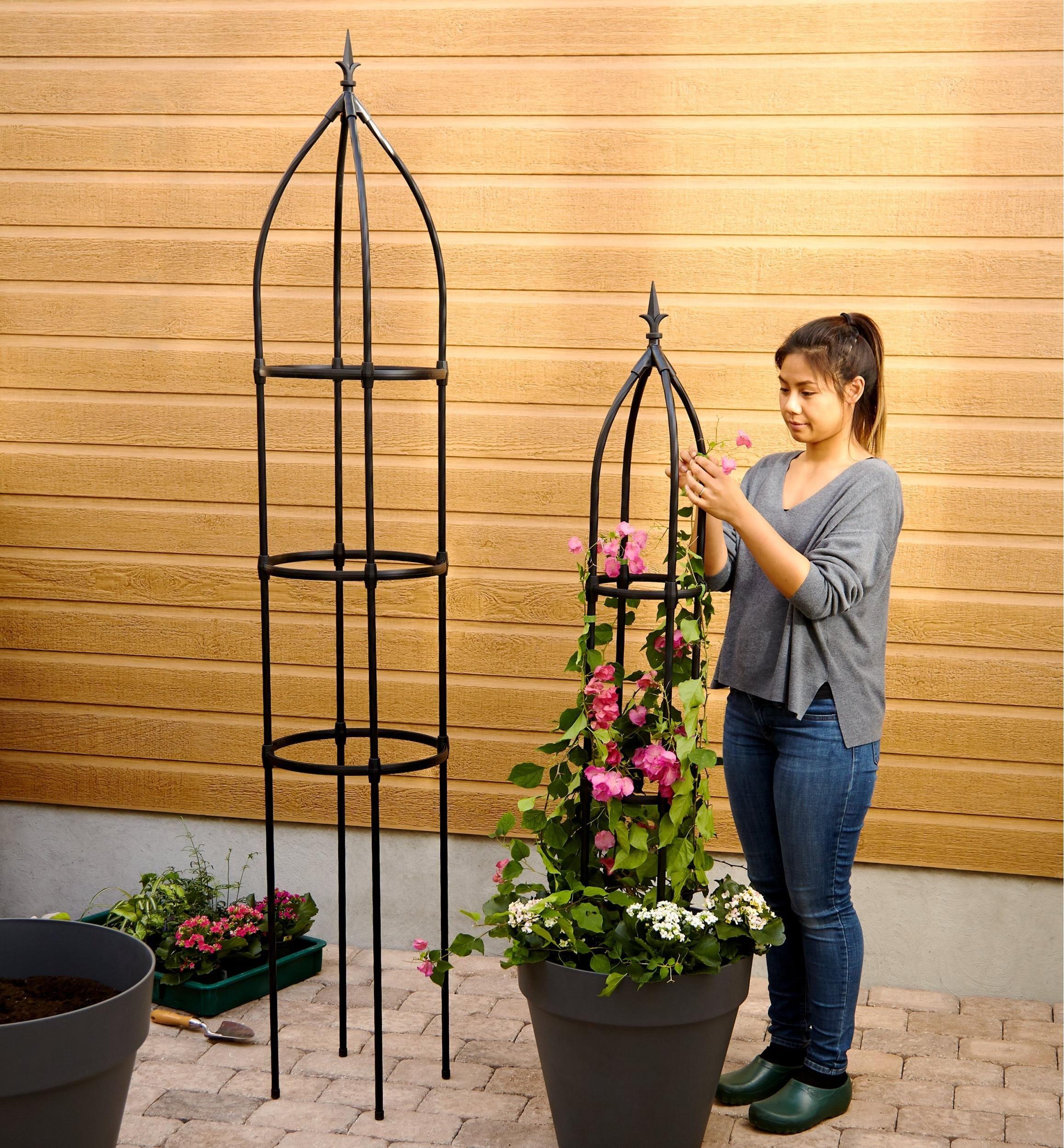 Garden Obelisks Lee Valley Tools In 2020 Garden Obelisk Obelisk Trellis Climbing Plants