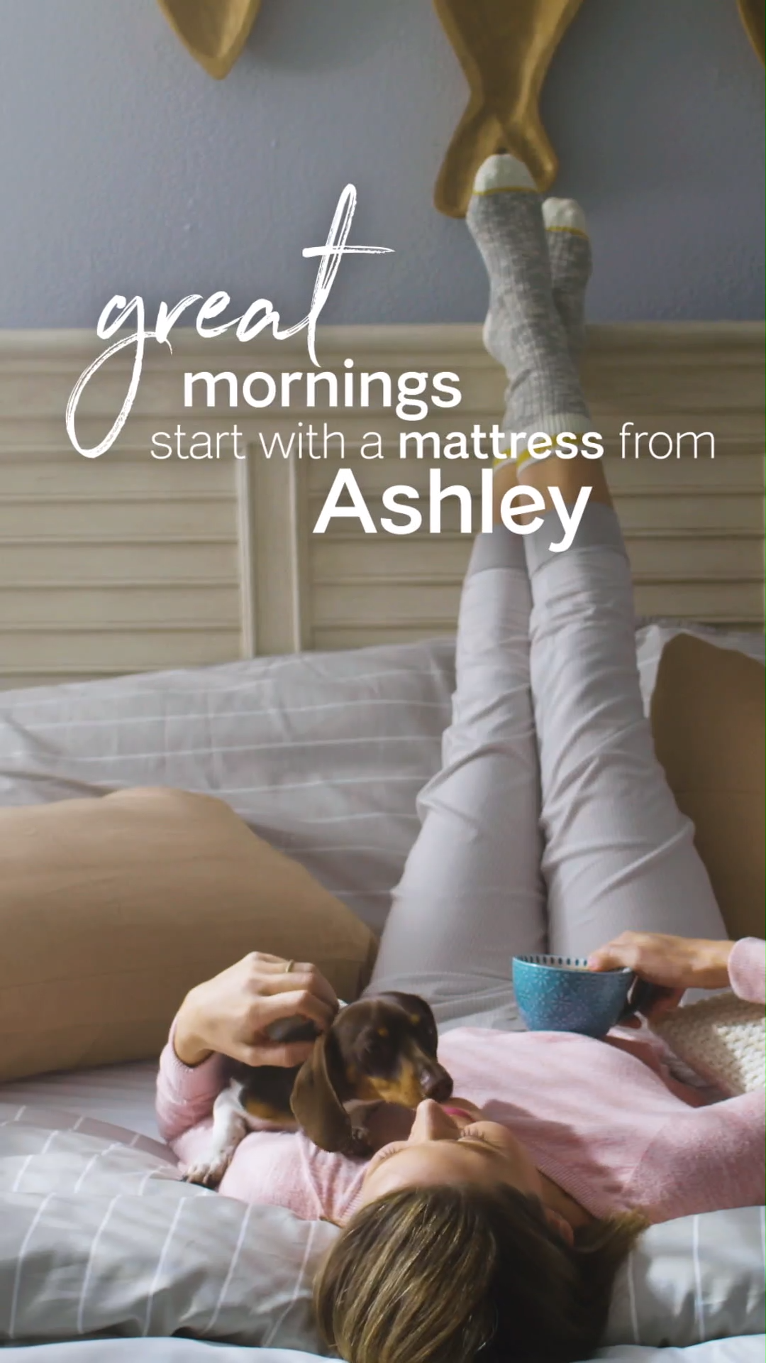 Sealy Vs Beautyrest Ashley Homestore Helps You Find Better Sleep With A Variety Of