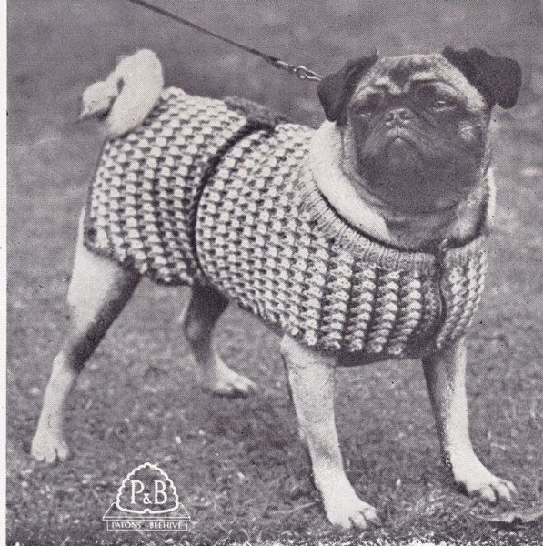 vintage pug coat knitting pattern. Styling since 1960. pdf ...