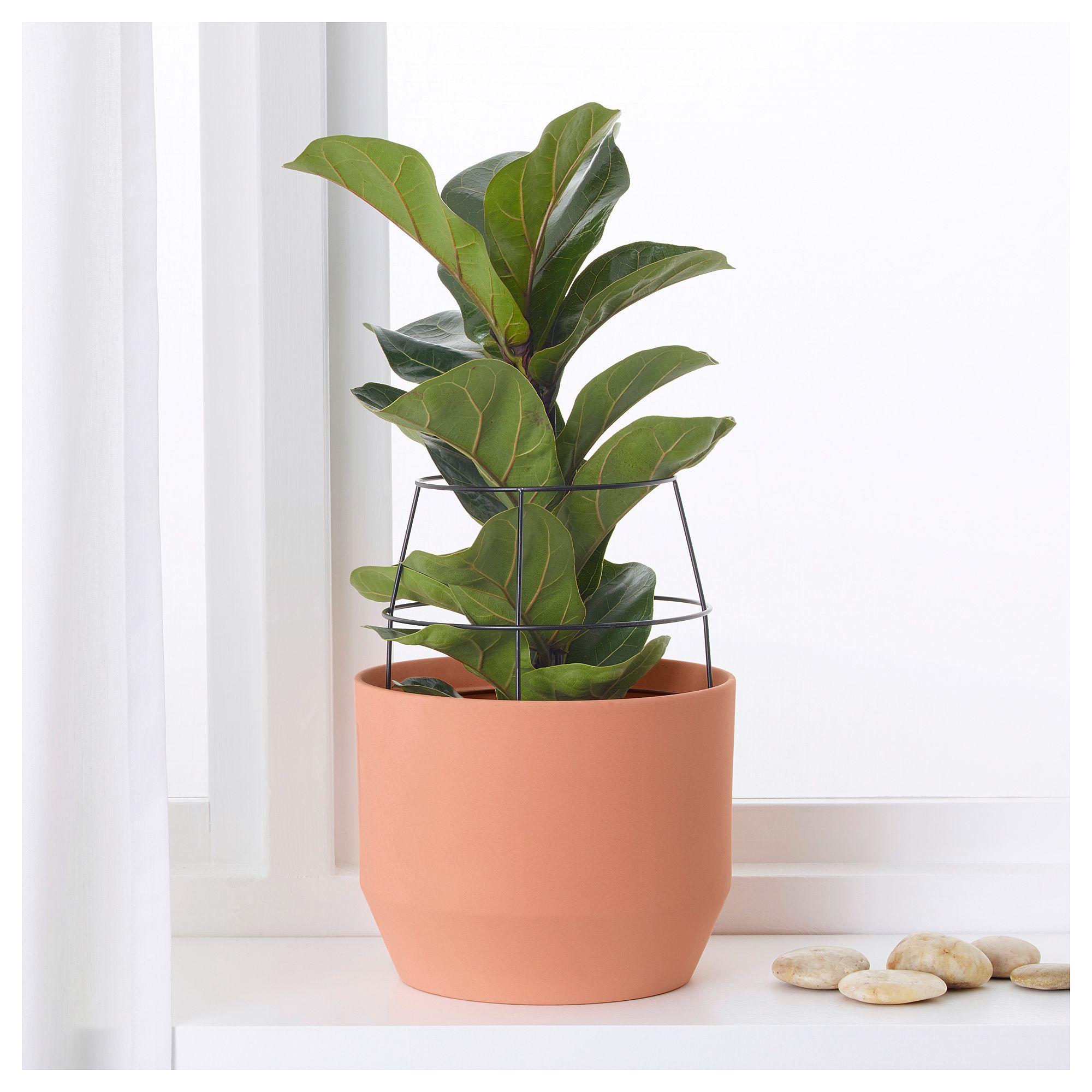 HjÄrtelig Plant Pot With Trellis Terracotta 17 Cm Ikea