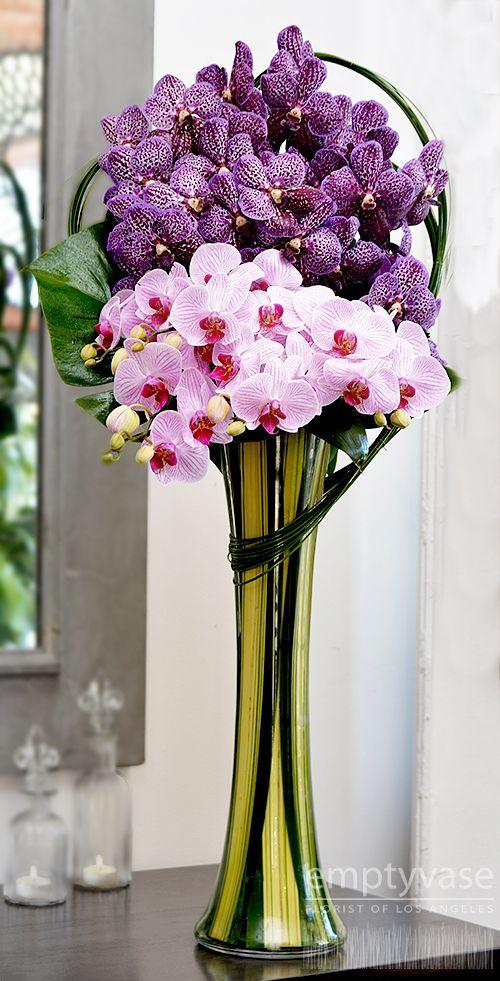 Empty Vase Florist Of Los Angeles Chimerical Orchids Description