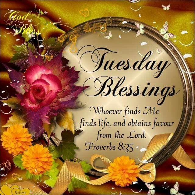 Tuesday Blessings Proverbs 8 35 Happy Tuesday Morning Tuesday