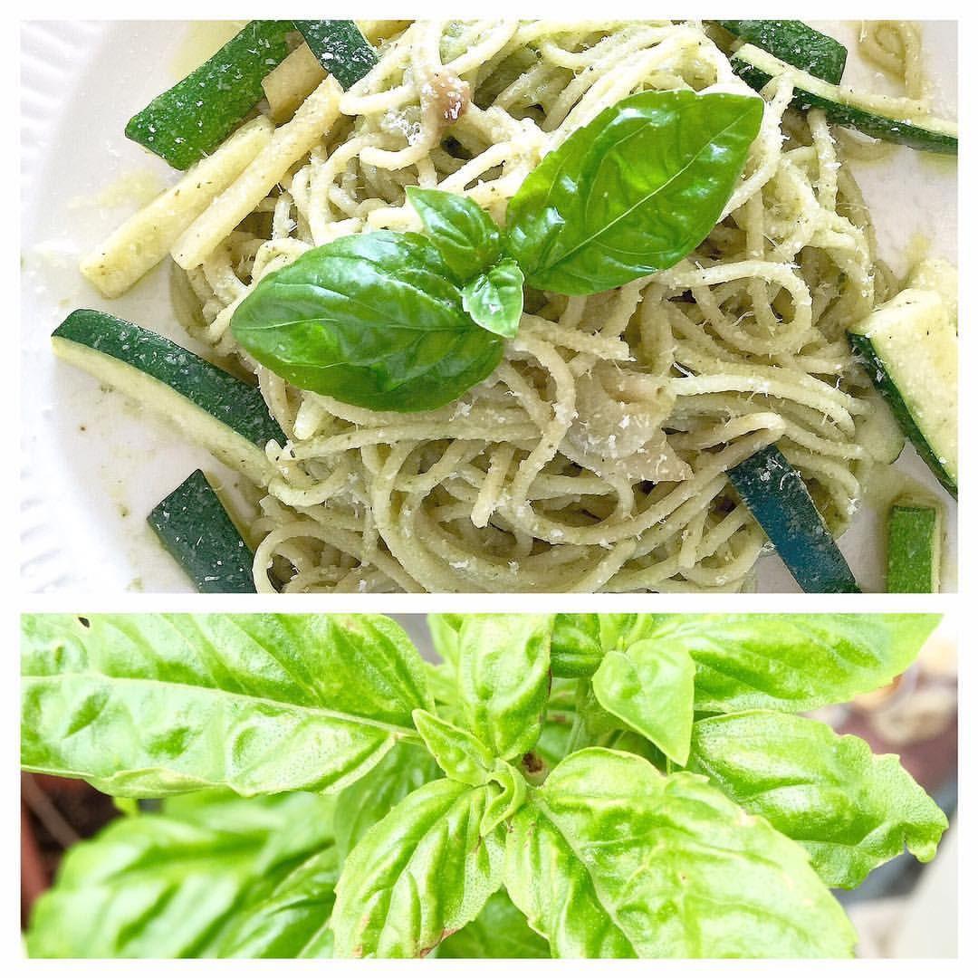 Genovese spaghetti _ Basil, Zucchini & Anchovy  ジェノベーゼスパゲッティ  Basils are growing a lot in my tiny garden, so made Genovese sauce! So refreshing taste and good for Saturday brunch especially in hot Summer!  お家のバジルが元気にたくさん育っているので、ジェノバソースを作りました!爽やかな香りが、夏のブランチにぴったり! #basil#vegetable #herb#spaghetti#anchovy#brunch#healthy#refreshing#summer#パスタ#アンチョビ#ブランチ#ヘルシー