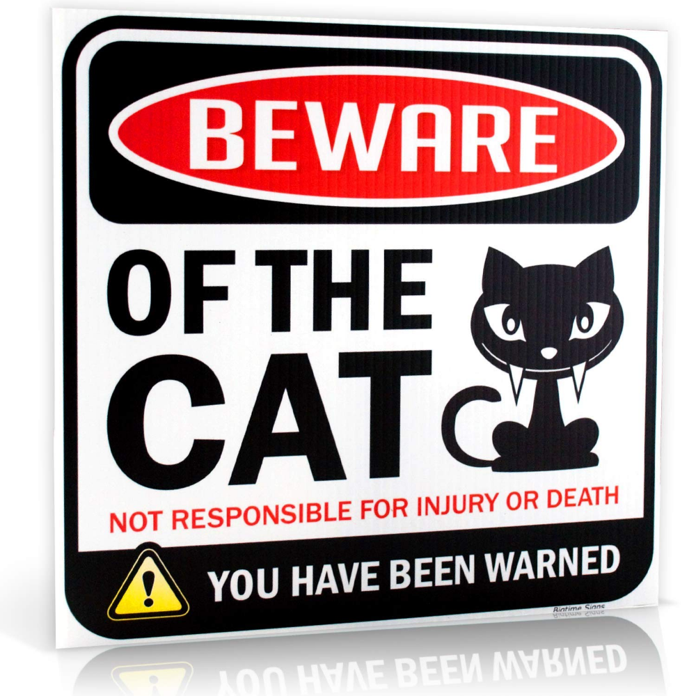 "Beware of Cat Warning Sign 12"" x 12"