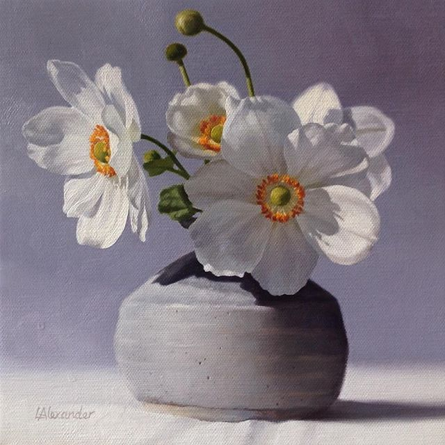 New Little Anemone Painting Oil Painting Anemone Stilllife Pot Sunlight Flower Painting Still Life Flowers Acrylic Flowers