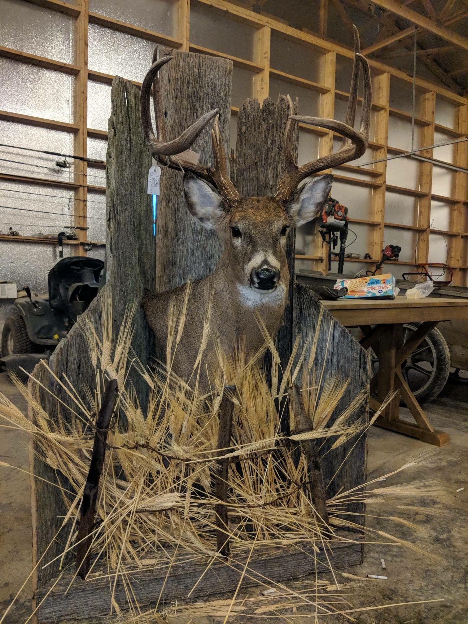 Deer Hunting Man Cave